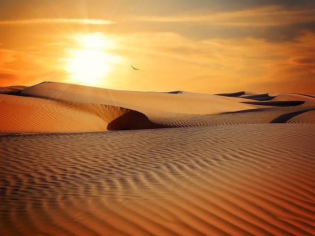 Dubai – Wüstenshow und Kamelreiten